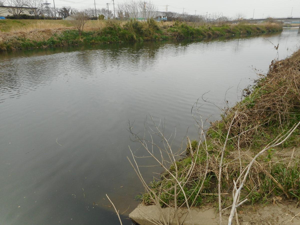 当山付近の新河岸川の流れ